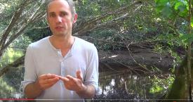 La rentrée en pleine forme 2 (vidéo)
